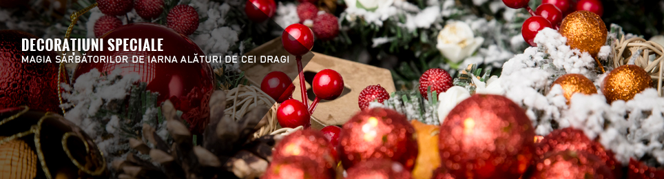 Decoratiuni speciale de Craciun, 2017