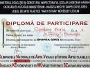 marina capatina diploma participare olimpiada nationala arte vizuale miercurea ciuc 130x98 Biografie