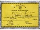 marina capatina premiu I clasa IX 130x98 Biografie