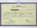 marina capatina premiu I clasa XII 130x98 Biografie
