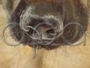 Portret de fata cu caine