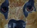 Alexia 9 ani Caine ciobanesc 130x98 Meditatii de pictura si desen