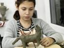 Grup 10 14 ani Modelaj Lut Vulpe Sara 130x98 Atelier modelaj