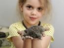 Grup 6 8 ani Modelaj Lut Broasca Testosa Anastasia 130x98 Atelier modelaj