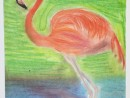 Scoala De Vara Desen Pastel Cretat Gradina Zoologica Studiu Animale Flamingo Briana 130x98 Scoala de Vara, 2015