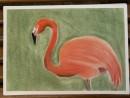 Scoala De Vara Desen Pastel Cretat Gradina Zoologica Studiu Animale Flamingo Melania 130x98 Scoala de Vara, 2015