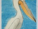 Scoala De Vara Desen Pastel Cretat Gradina Zoologica Studiu Animale Pelican Cristi 130x98 Scoala de Vara, 2015