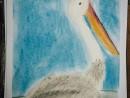 Scoala De Vara Desen Pastel Cretat Pelican Teuta 130x98 Scoala de Vara, 2015