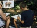 Scoala De Vara Desen Sepia Carbune Gradina Zoologica Studiu Animale Urs Razvan 130x98 Scoala de Vara, 2015