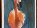 Scoala De Vara Pastel Cretat Gradina Zoologica Studiu Animale Flamingo Dalia  130x98 Scoala de Vara, 2015
