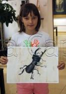 Clasa 10 14 ani Pictura Acuarela Gandac Lera. 131x187 Rezultate de exceptie la cursurile de pictura si desen