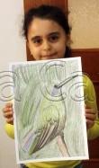 Clasa 6 8 ani Desen Creioane Colorate Colibri Salima. 110x187 Rezultate de exceptie la cursurile de pictura si desen