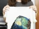 Atelier Design Vestimentar Creare si Decorare tricou individual cu tema Pasarea Daria 130x98 Atelier design vestimentar, Copii 8 18 ani